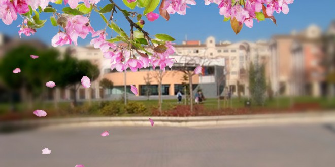 primavera_Zizur-660x330